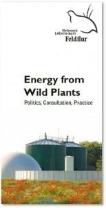 Energy from Wild Plants