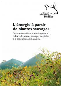 Praxisratgeber französisch