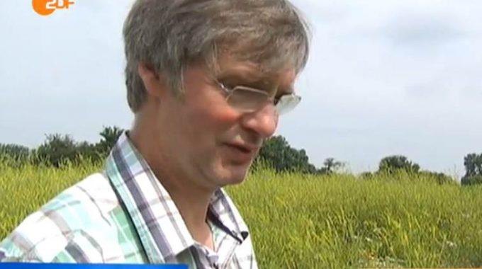 Schulze Thier Biogas Wildpflanzen ZDF