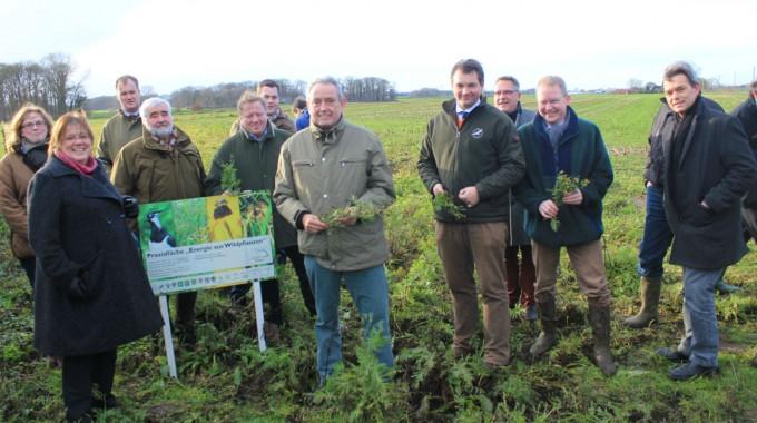 Parlamentarischer Staatssekretär besucht Wildpflanzenfläche zur Energiegewinnung