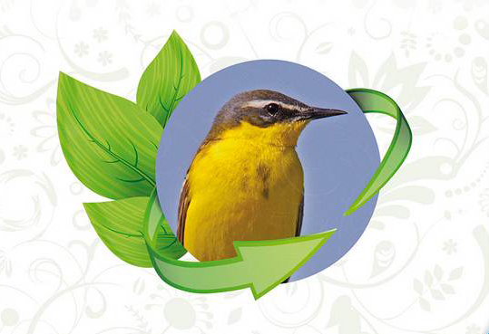 Greening für den Artenschutz nutzen