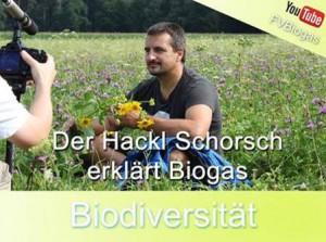 Biogas Hackl Schorsch