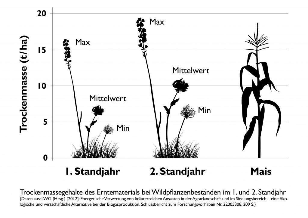 Diagramm Ertrag Wildpflanzen