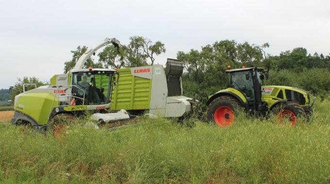 Biogas und Naturschutz passen zusammen